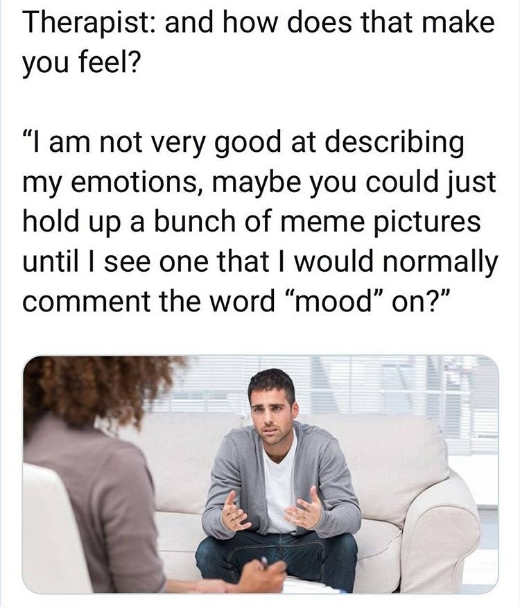 "Text - Therapist: and how does that make you feel? ""I am not very good at describing my emotions, maybe you could just hold up a bunch of meme pictures until I see one that I would normally comment the word ""mood"" on?"""