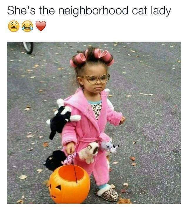 trick-or-treat - She's the neighborhood cat lady