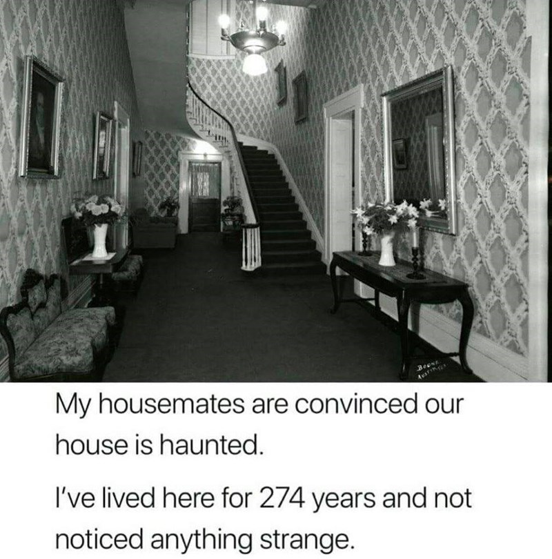 Room - My housemates are convinced our BeeNE Ausre house is haunted. I've lived here for 274 years and not noticed anything strange.