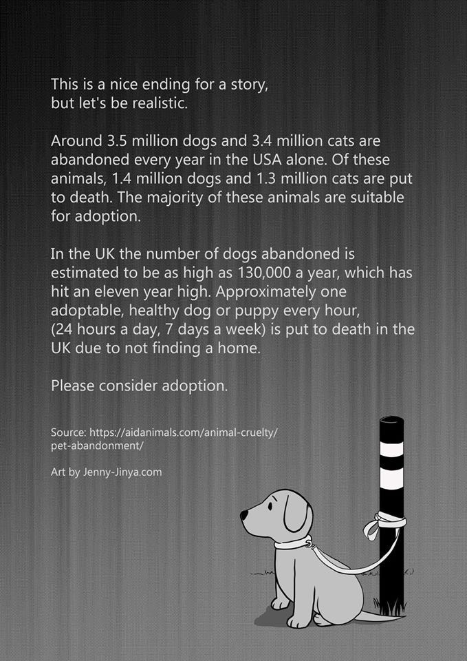 Text - This is a nice ending for a story, but let's be realistic. Around 3.5 million dogs and 3.4 million cats are abandoned every year in the USA alone. Of these animals, 1.4 million dogs and 1.3 million cats are put to death. The majority of these animals are suitable for adoption. In the UK the number of dogs abandoned is estimated to be as high as 130,000 a year, which has hit an eleven year high. Approximately one adoptable, healthy dog or puppy every hour, (24 hours a day, 7 days a week) i