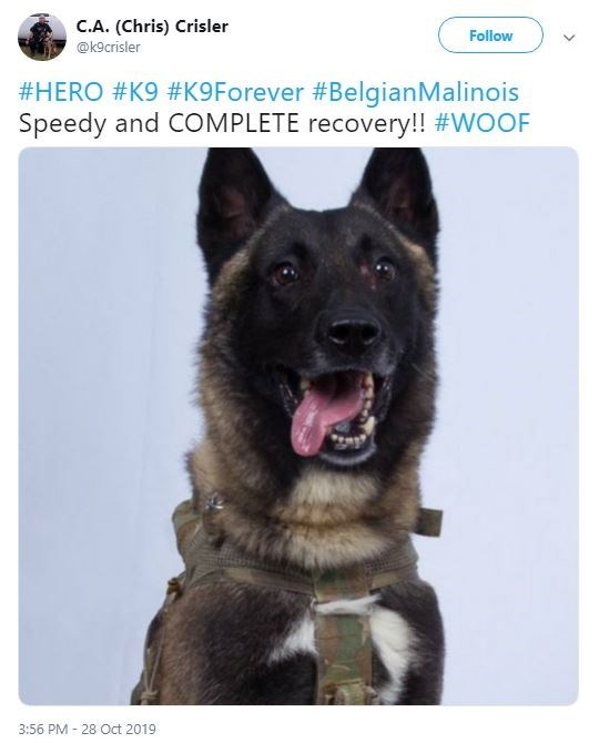 Dog - C.A. (Chris) Crisler Follow @k9crisler #HERO #K9 #K9 Forever #BelgianMalinois Speedy and COMPLETE recovery!! #WOOF 3:56 PM 28 Oct 2019