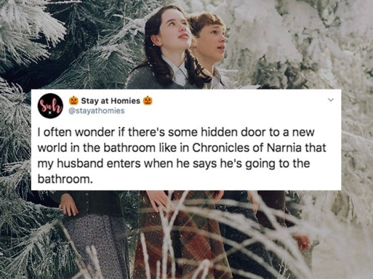 Text - Stay at Homies @stayathomies Syld I often wonder if there's some hidden door to a new world in the bathroom like in Chronicles of Narnia that my husband enters when he says he's going to the bathroom