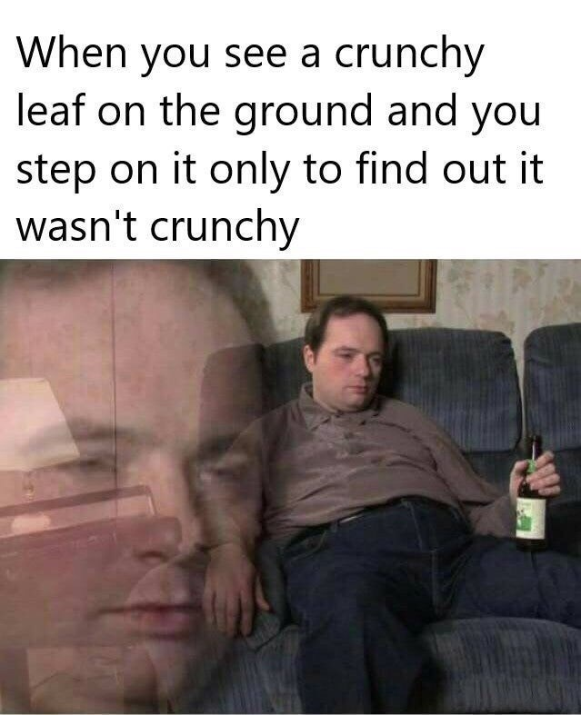 "Funny meme that reads, ""When you see a crunchy leaf on the ground and you step on it only to find out it wasn't crunchy"" above a stock photo of a guy looking sad drinking a beer"