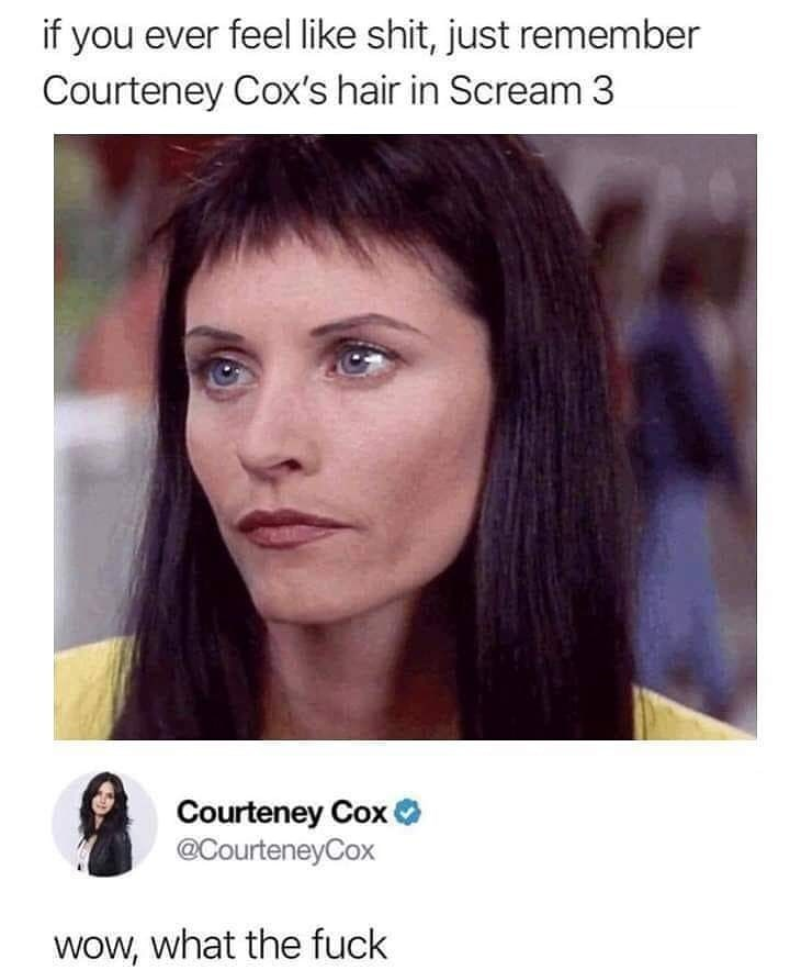 Face - if you ever feel like shit, just remember Courteney Cox's hair in Scream 3 Courteney Cox @CourteneyCox WoW, what the fuck
