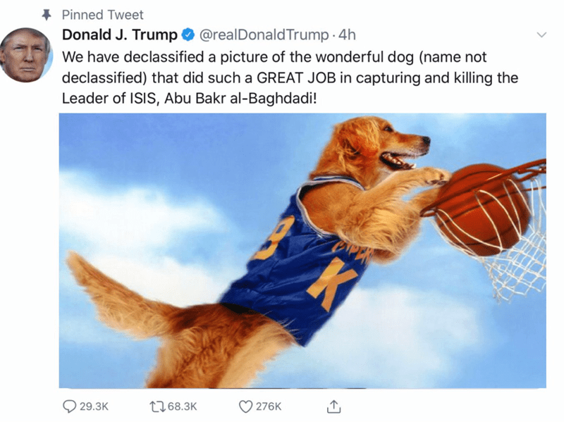 Canidae - Pinned Tweet We have declassified a picture of the wonderful dog (name not declassified) that did such a GREAT JOB in capturing and killing the Leader of ISIS, Abu Bakr al-Baghdadi! Donald J. Trump@realDonaldTrump 4h K 276K 1268.3K 29.3K