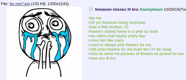 Text - File: for-me? jpg (133 KB, 1250x1243) femanon misses lil bro Anonymous 10/29/19 (Tue be me >25 y/o femanon living overseas >has a little brother, 13 >haven't visited home in a year bc work we video chat nearly every day miss him like crazy used to always pick flowers for me still picks flowers for me even tho I'm far away >mfw he send me pictures of flowers he picked for me >love you lil bro