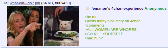 Cat - File: what-did-i-do?.jpg (64 KB, 800x450) femanon's 4chan experience Anonymous >be me >posts funny nice story on 4chan comments: >ALL WOMEN ARE WHORES GO KILL YOURSELF me: huh?