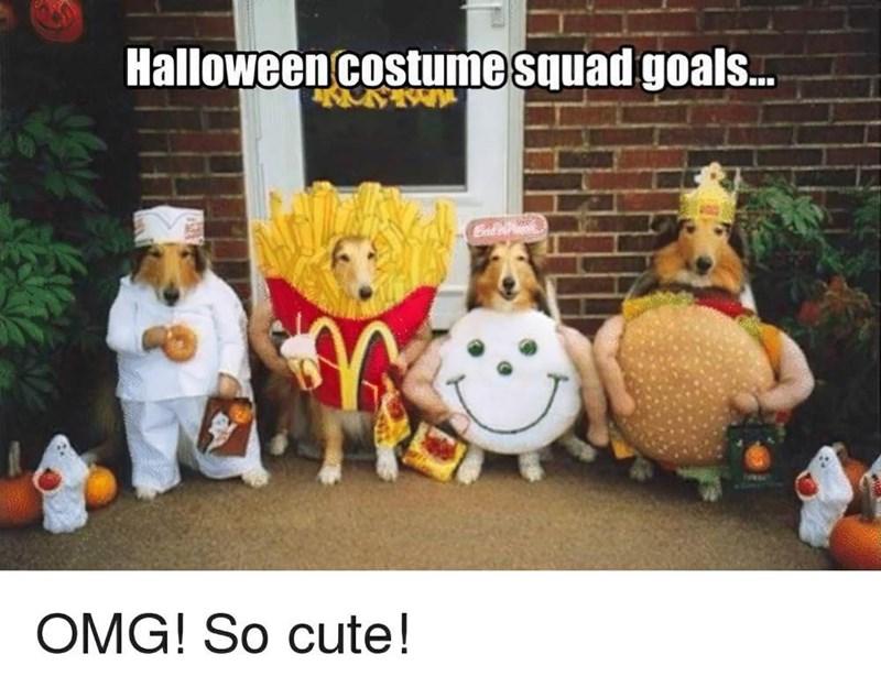 Cartoon - Halloweencostume squad goals.. Cal OMG! So cute!