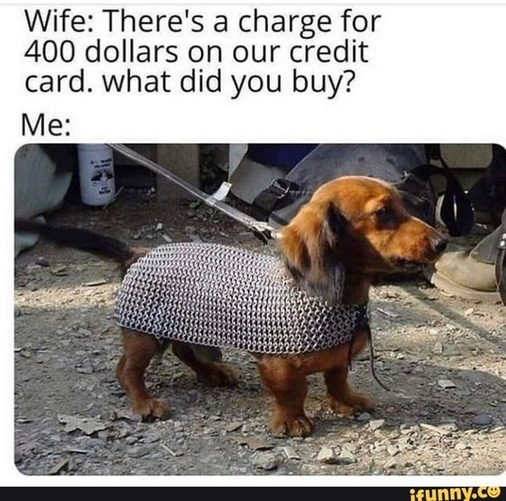 Dog - Wife: There's a charge for 400 dollars on our credit card. what did you buy? Me: ifunny.co