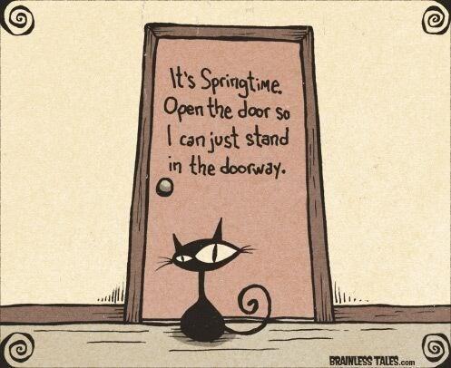 Cartoon - It's Springtwe Open the door so I can just stand the doorway. BRAINLESS TALES.com