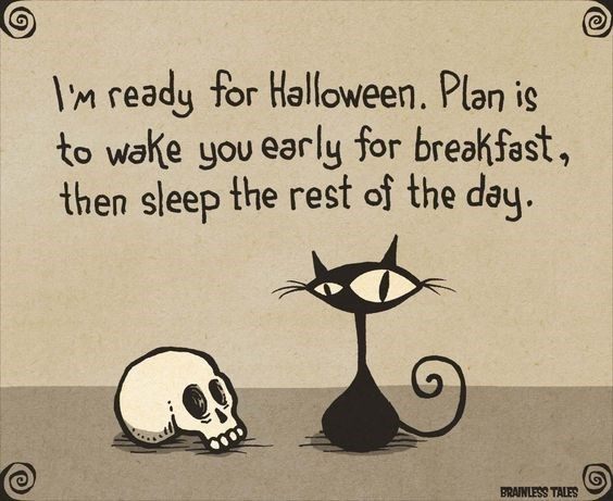 Cartoon - IM ready for Halloween. Plan is to wake you early for breakfast, then sleep the rest of the day. BRAINLESS TALES