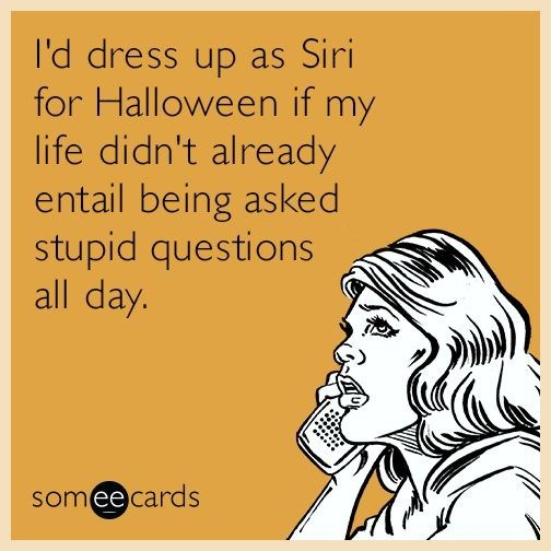 Text - I'd dress up as Siri for Halloween if life didn't already entail being asked stupid questions all day. my someecards