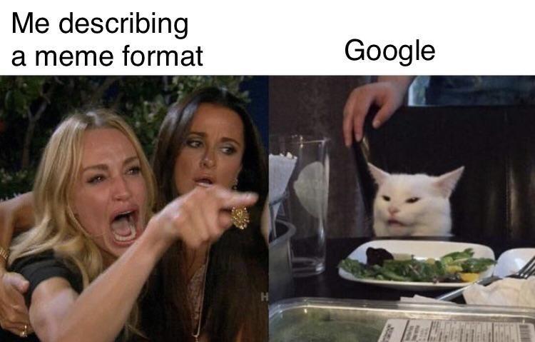 Cat - Me describing Google a meme format