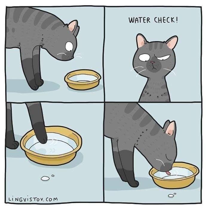 Cartoon - WATER CHECK! LINGVISTOV. Com