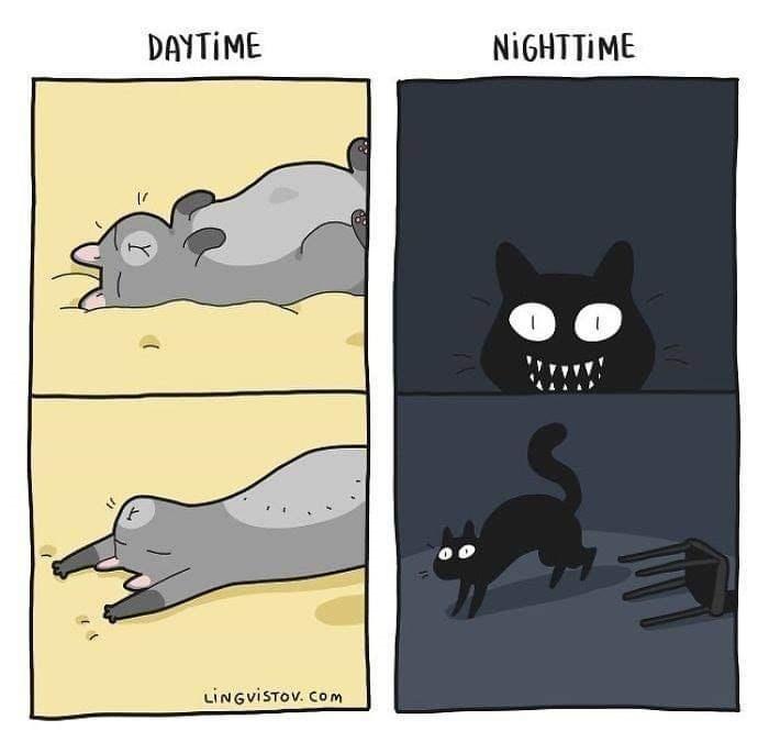 Cartoon - DAYTIME NIGHTTIME LINGVISTOV. COm