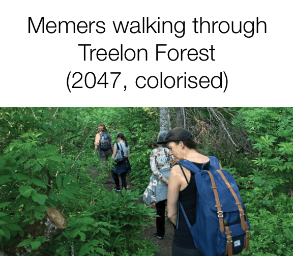 People in nature - Memers walking through Treelon Forest (2047, colorised)