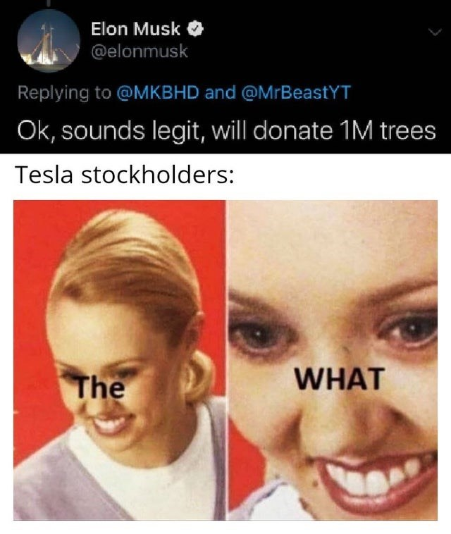 Face - Elon Musk @elonmusk Replying to @MKBHD and @MrBeastYT Ok, sounds legit, will donate 1M trees Tesla stockholders: WHAT The