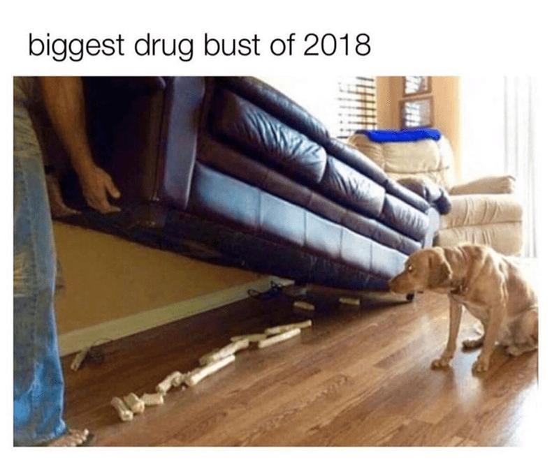 Wood - biggest drug bust of 2018