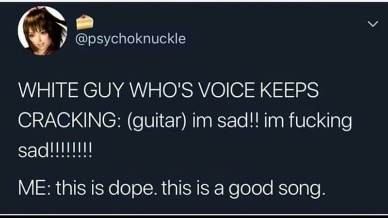Text - @psychoknuckle WHITE GUY WHO'S VOICE KEEPS CRACKING: (guitar) im sad!! im fucking sad!!!!!!! ME: this is dope. this is a good song.