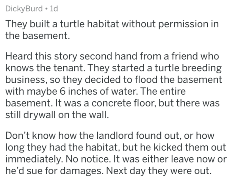 Text - DickyBurd 1d They built a turtle habitat without permission in the basement Heard this story second hand from a friend who knows the tenant. They started a turtle breeding business, so they decided to flood the basement with maybe 6 inches of water. The entire basement. It was a concrete floor, but there was still drywall on the wall. Don't know how the landlord found out, or how long they had the habitat, but he kicked them out immediately. No notice. It was either leave now or he'd sue