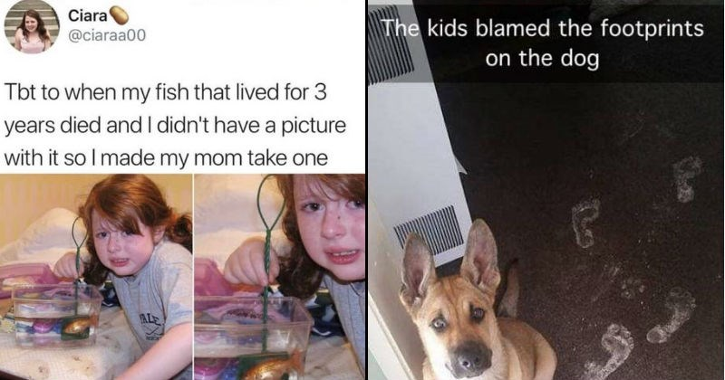 Stories and images of children being stupid.