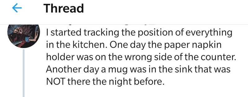 Text - Thread I started tracking the position of everything in the kitchen. One day the paper napkin holder was on the wrong side of the counter. Another day a mug was in the sink that was NOT there the night before.