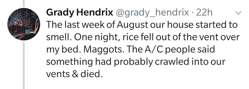 Text - Grady Hendrix @grady_hendrix 22h The last week of August our house started to smell. One night, rice fell out of the vent over my bed. Maggots. The A/C people said something had probably crawled into our vents & died