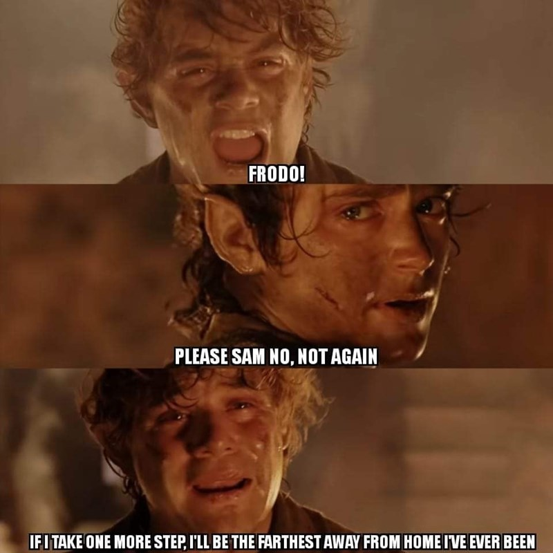 Photo caption - FRODO! PLEASE SAM NO, NOT AGAIN IFITAKE ONE MORE STEP, I'LL BE THE FARTHEST AWAY FROM HOME IVE EVER BEEN