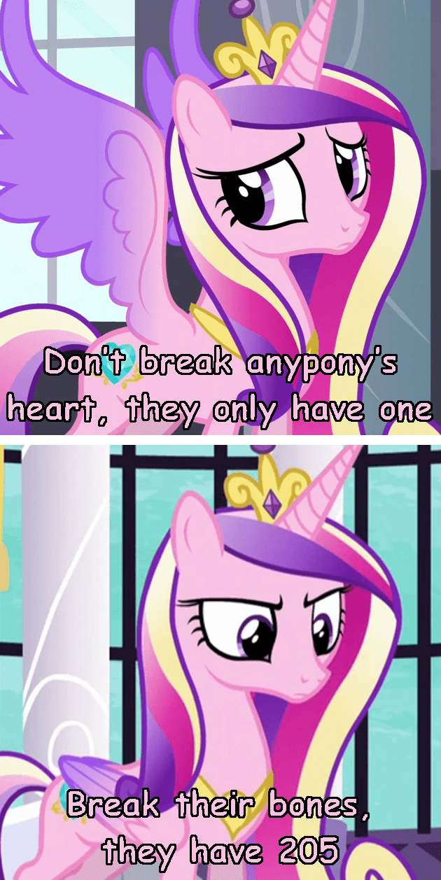 incorrect my little pony quotes princess cadence princess spike - 9382195968