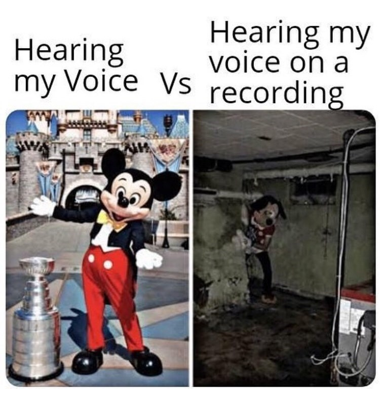 Funny meme about hearing one's voice in their head vs. hearing their voice on a recording