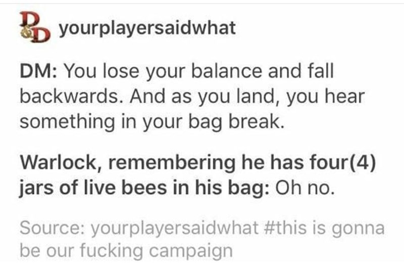 Text - yourplayersaidwhat DM: You lose your balance and fall backwards. And as you land, you hear something in your bag break. Warlock, remembering he has four(4) jars of live bees in his bag: Oh no. Source: yourplayersaidwhat #this is gonna be our fucking campaign