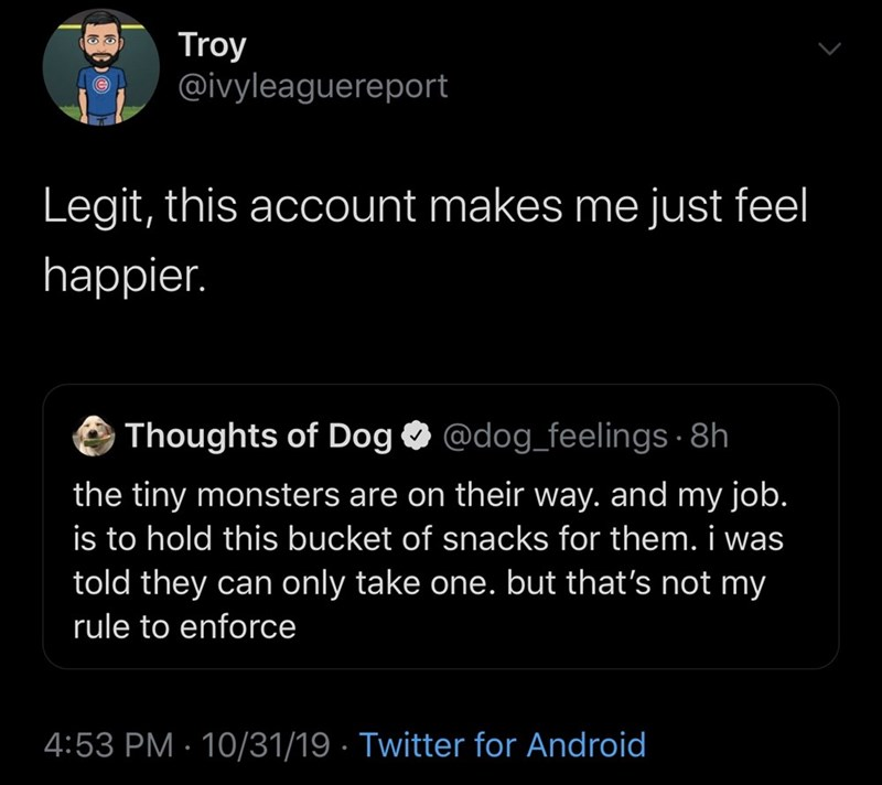 Text - Troy @ivyleaguereport Legit, this account makes me just feel happier. Thoughts of Dog @dog_feelings 8h the tiny monsters are on their way.and my job. is to hold this bucket of snacks for them. i was told they can only take one. but that's not my rule to enforce 4:53 PM 10/31/19 Twitter for Android