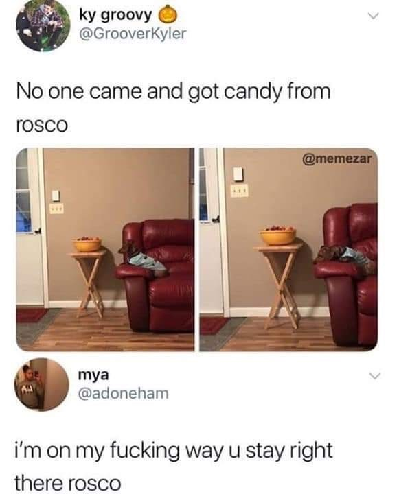 Product - ky groovy @GrooverKyler No one came and got candy from rosco @memezar mya @adoneham i'm on my fucking way u stay right there rosco