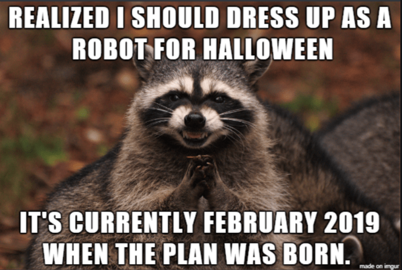 Procyon - REALIZED I SHOULD DRESS UP AS A ROBOT FOR HALLOWEEN IT'S CURRENTLY FEBRUARY 2019 WHEN THE PLAN WAS BORN. made on imgur
