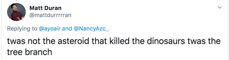 Text - Matt Duran @mattdurrrrran Replying to @ayoair and @NancyAzc_ twas not the asteroid that killed the dinosaurs twas the tree branch