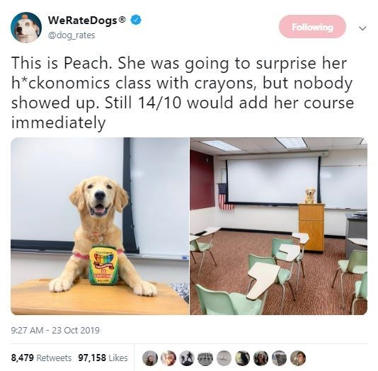 Product - WeRateDogs Following @dog rates This is Peach. She was going to surprise her h*ckonomics class with crayons, but nobody showed up. Still 14/10 would add her course immediately anang 03 9:27 AM 23 Oct 2019 8,479 Retweets 97,158 Likes