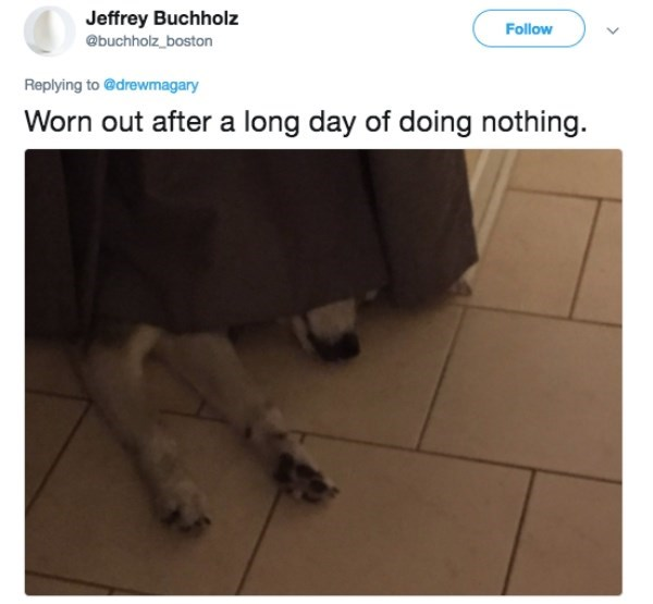 Floor - Jeffrey Buchholz Follow @buchholz_boston Replying to @drewmagary Worn out after a long day of doing nothing.