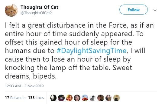 Text - Thoughts Of Cat @ThoughtsOfCat2 Follow I felt a great disturbance in the Force, as if an entire hour of time suddenly appeared. To offset this gained hour of sleep for the humans due to #DaylightSavingTime, I will cause then to lose an hour of sleep by knocking the lamp off the table. Sweet dreams, bipeds. 12:03 AM 3 Nov 2019 17 Retweets 133 Likes