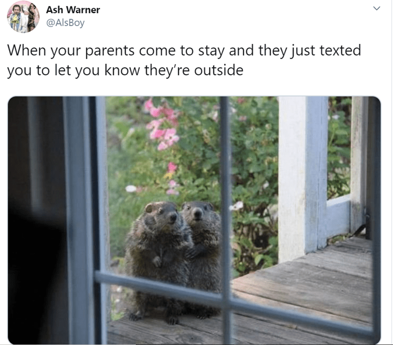 Wildlife - Ash Warner @AlsBoy When your parents come to stay and they just texted you to let you know they're outside