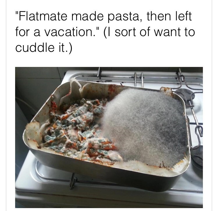 """Cookware and bakeware - """"Flatmate made pasta, then left for a vacation."""" (I sort of want to cuddle it.)"""