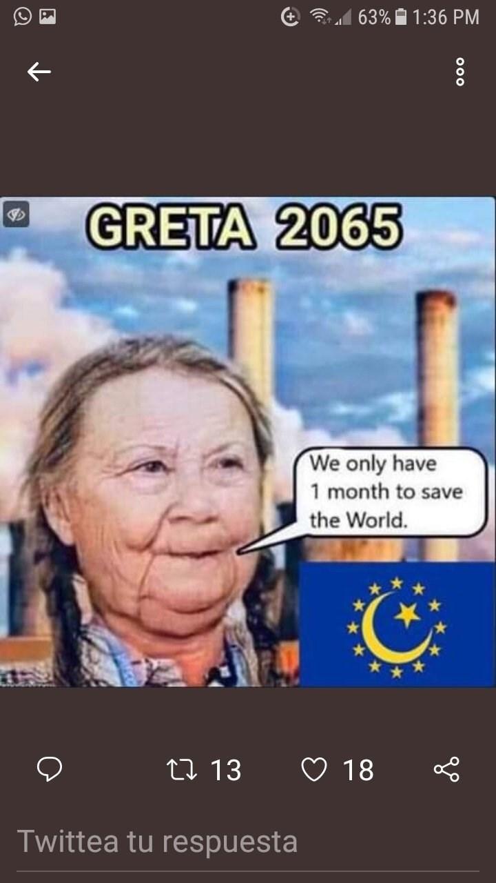 Text - 63% 1:36 PM GRETA 2065 We only have 1 month to save the World. 18 Li 13 Twittea tu respuesta ooo