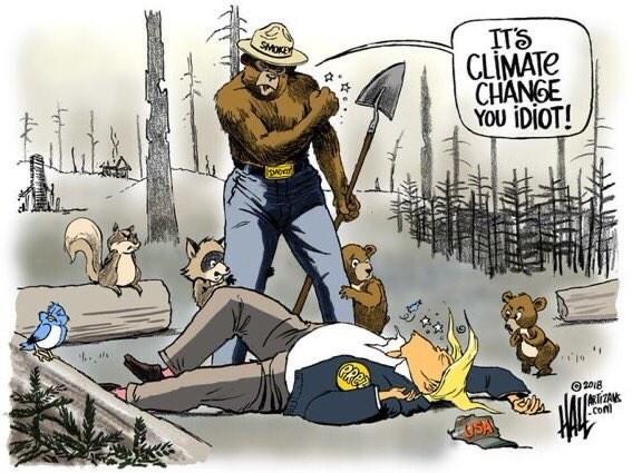 Cartoon - ITS CLIMATE CHANGE YOU IDIOT! SMOKEY 2018 TZAN .con USA .
