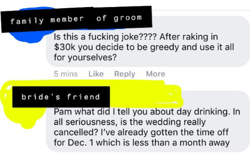 Text - of groom fami 1y member Is this a fucking joke???? After raking in $30k you decide to be greedy and use it all for yourselves? 5 mins Like Reply More bride's friend Pam what did I tell you about day drinking. In all seriousness, is the wedding really cancelled? I've already gotten the time off for Dec. 1 which is less than a month away