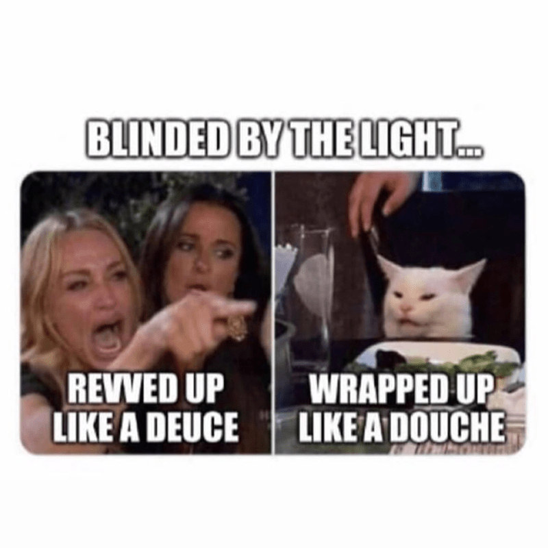 Funny meme, dank memes, woman yelling at cat meme, manfred mann blinded by the light lyrics