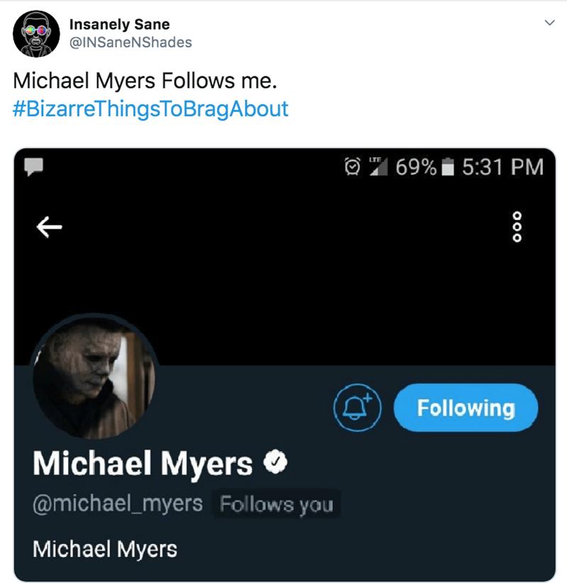 Text - Insanely Sane @INSaneNShades Michael Myers Follows me. #BizarreThingsTOBragAbout 69%5:31 PM LTE Following Michael Myers @michael_myers Follows you Michael Myers OOO