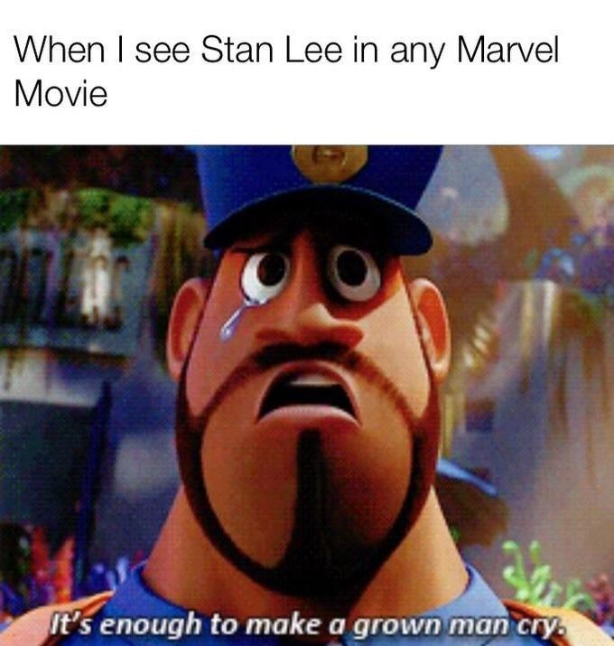 Animated cartoon - When I see Stan Lee in any Marvel Movie It's enough to make a grown man cry.