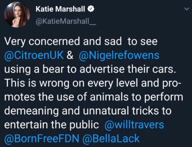 Text - Katie Marshall @KatieMarshall Very concerned and sad to see @CitroenUK &@Nigel refowens using a bear to advertise their cars This is wrong on every level and pro- motes the use of animals to perform demeaning and unnatural tricks to entertain the public @willtravers @BornFreeFDN @BellaLack