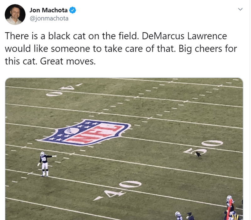 Sport venue - Jon Machota @jonmachota There is a black cat on the field. DeMarcus Lawrence would like someone to take care of that. Big cheers for this cat. Great moves. 40