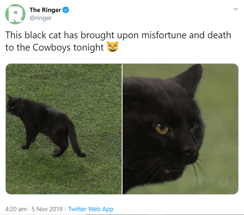 Cat - The Ringer @ringer This black cat has brought upon misfortune and death to the Cowboys tonight 4:20 am- 5 Nov 2019 Twitter Web App