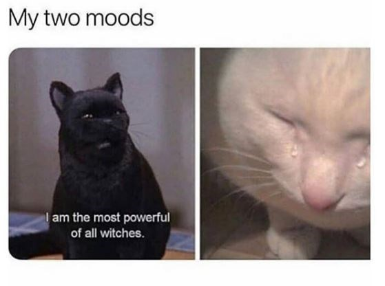 Cat - My two moods l am the most powerful of all witches.